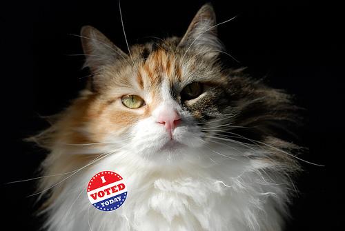 "Secret Ballot, Public Voting: The Subtle and Not-So-Subtle Persuasion of the ""I Voted"" Sticker | viz."