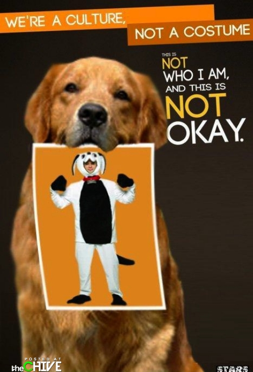 Wearing a Dog Costume