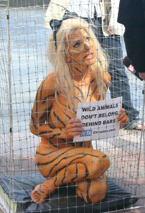 peta animal rights and their objectives