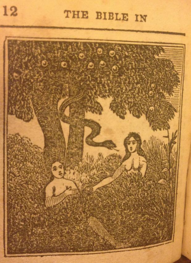 Adam and Eve in Miniature