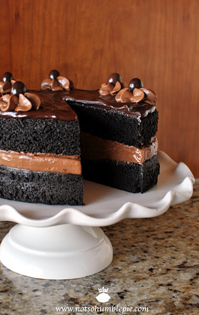 Midnight Mousse Cake