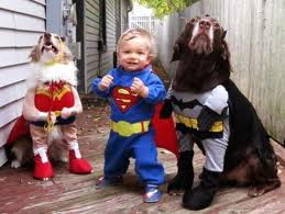 dogs and baby in super hero costumes