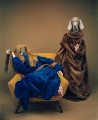 two grey dogs in velvet robes, one with a wig on